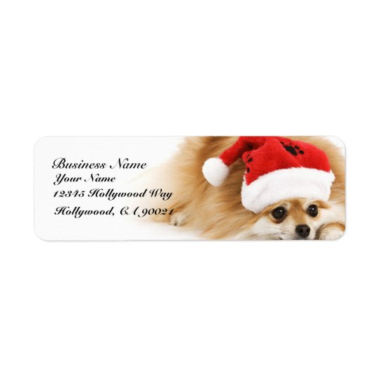 Christmas Pomeranian Address Labels