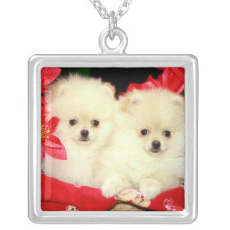 Christmas Pomeranians Necklace