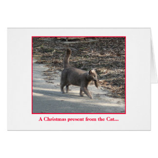 Christmas present from the Cat.... Card