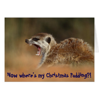 Christmas Pudding - KMP Christmas Card