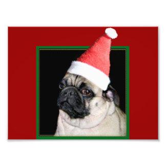 Christmas pug dog photo print