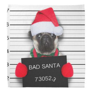 Christmas pug - mugshot dog - santa pug bandana