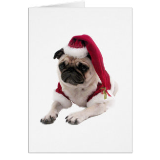 Christmas pug - santa claus dog - dog claus card