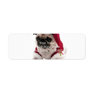 Christmas pug - santa claus dog - dog claus return address label