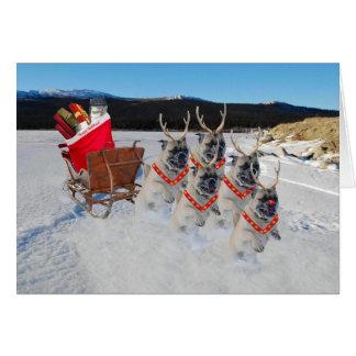 Christmas Pug Sleigh Greeting Card