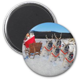 Christmas Pug Sleigh Magnet