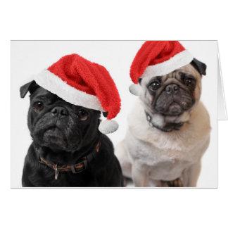 christmas pugs greeting card