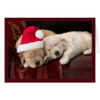 Christmas Puppies Card