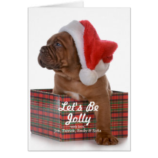 Christmas Puppy As Santa Card