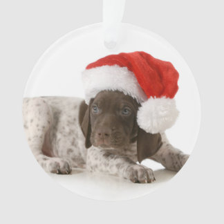 Christmas Puppy - German Shorthaired Pointer Ornament
