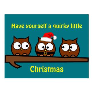 Christmas Quirky Owl Postcard