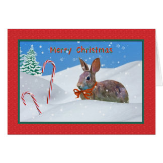 Christmas, Rabbit, Snow, Candy Canes Card