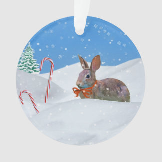 Christmas Rabbit Snow Candy Canes