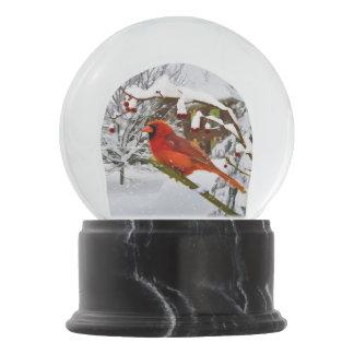 Christmas, Red Cardinal Bird and Snow Snow Globe