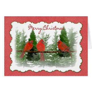Christmas - Red Cardinals Perched on Branch Card