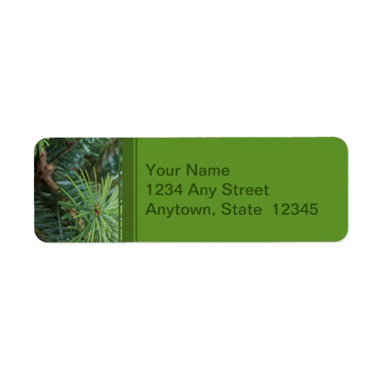Christmas Return Address Labels with Pine Branches