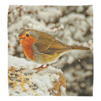 Christmas Robin in the Snow in Scotland Bandana