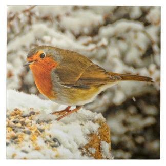 Christmas Robin in the Snow in Scotland Ceramic Tile