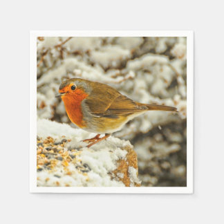 Christmas Robin in the Snow in Scotland Disposable Serviette