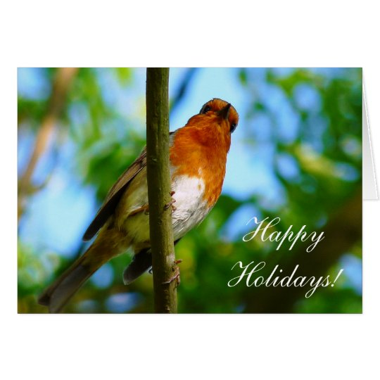 CHRISTMAS ROBINS CARD