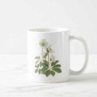 Christmas rose mugs