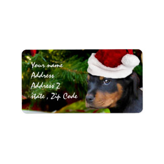 Christmas Rottweiler puppy Label