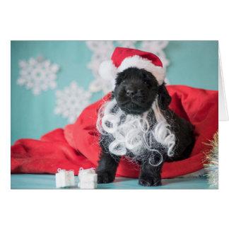 Christmas Santa Puppy Card