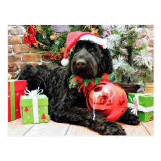Christmas - Schnoodle - Zeus Postcard