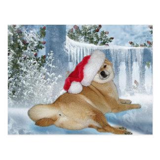 Christmas Shiba Inu Postcard