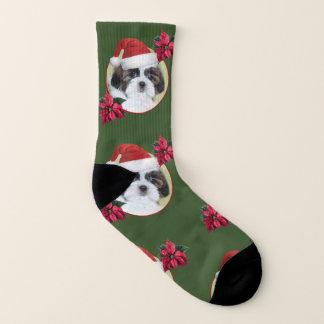 Christmas shih tzu  dog socks 1