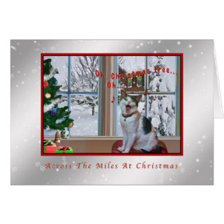Christmas, Singing Cat, Snow, Card