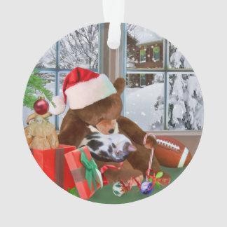 Christmas, Sleeping Cat, Teddy Bear