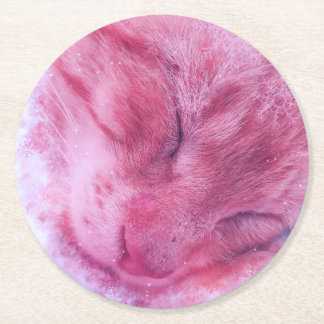 Christmas Snowflake Sleepy Cat Round Paper Coaster