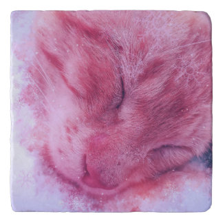 Christmas Snowflake Sleepy Cat Trivets