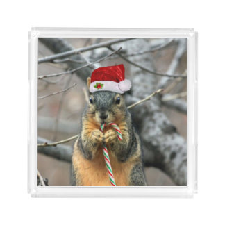 Christmas Squirrel Acrylic Tray