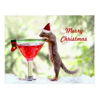Christmas Squirrel at Happy Hour Postcard