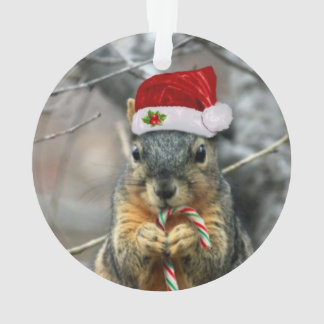 Christmas Squirrel Ornament