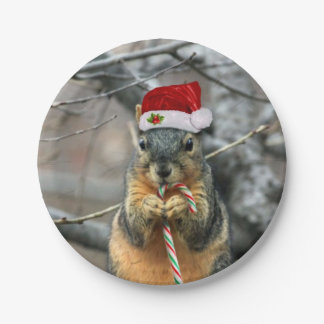 Christmas Squirrel Paper Plate