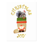 Christmas Squirrel Postcard
