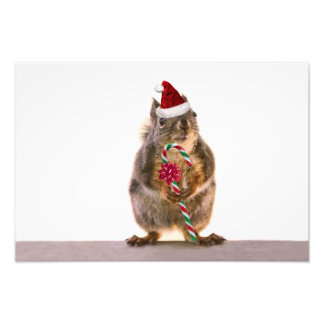 Christmas Squirrel with Candy Cane Art Photo