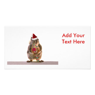 Christmas Squirrel with Candy Cane Customised Photo Card