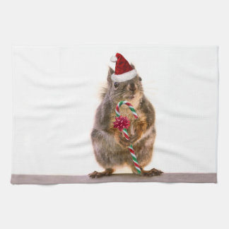 Christmas Squirrel with Candy Cane Kitchen Towel