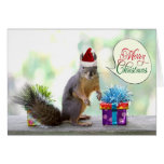 Christmas Squirrel with Christmas Presents Greeting Cards