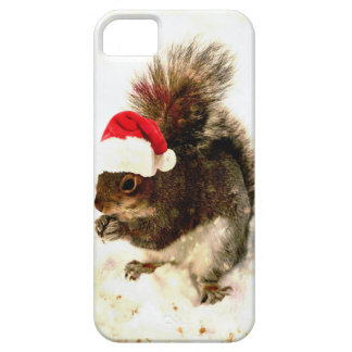 Christmas Squirrel With Santa Hat In Snow iPhone 5 Cover