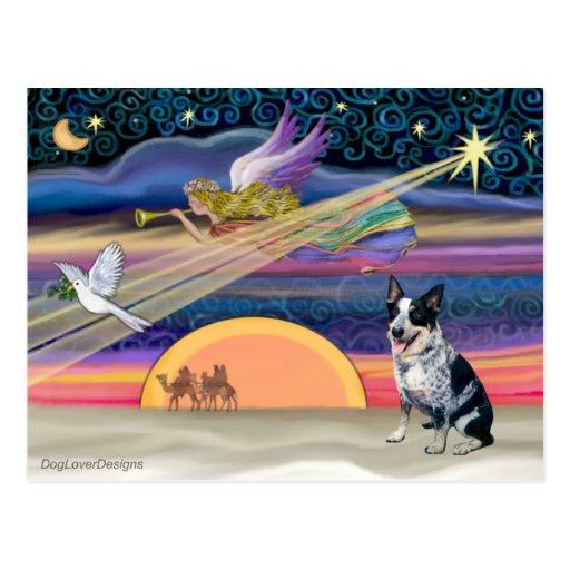 Christmas Star - Australian Cattle Dog Post Card