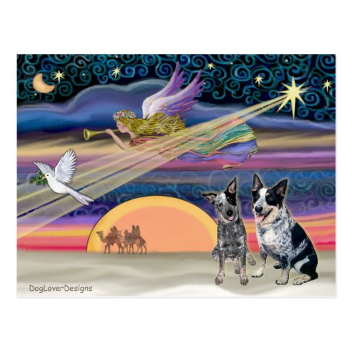 Christmas Star - Australian Cattle Dogs (two) Post Card
