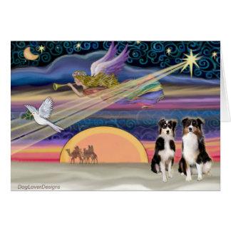 Christmas Star - Australian Shepherds (two tri) Greeting Card