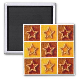 Christmas Stars - Magnet
