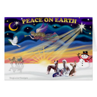 Christmas Sunrise - Chinese Cresteds (four) Card
