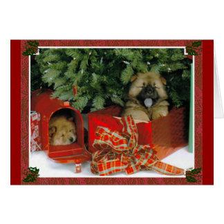Christmas Surprise Card